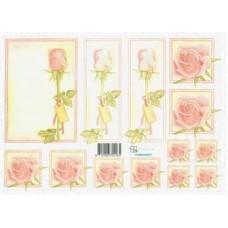 Knipvel Marjoleine roos roze